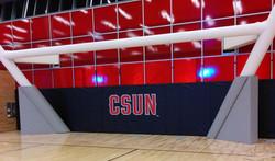 Printed Wall Padding | CSUN