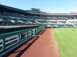 Baseball Rail Padding - Field