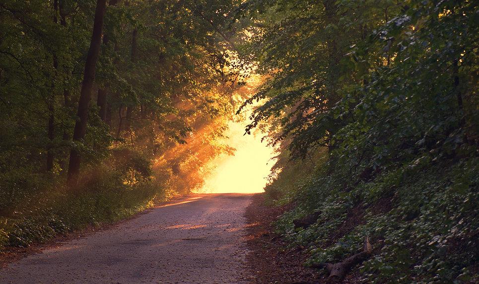 Zelf een weg van 1000 km, begint met een eerste stap