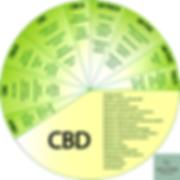 cannabidiol medical hemp, hemp seed, hemp, cannabis, hemp oil, supplement, hemp seed oil, cannabidiol rich hemp oil, cannabis seed oil, natural hemp food, honey supplement, cannabis, hemp