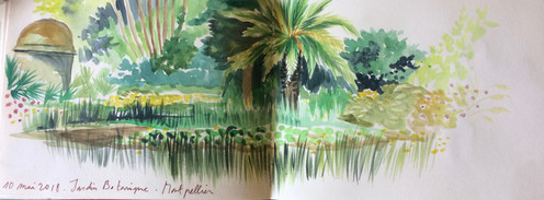 Jardin botanique de Montpellier.jpg