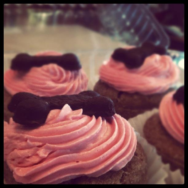 Pink Pupcakes