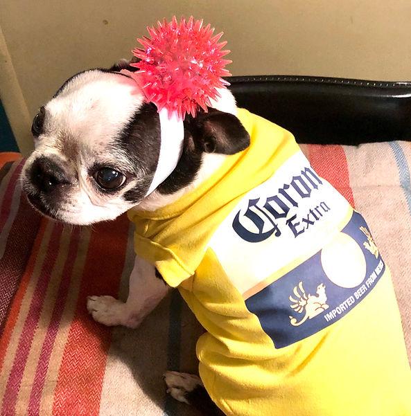 Coronavirus Costume.jpg