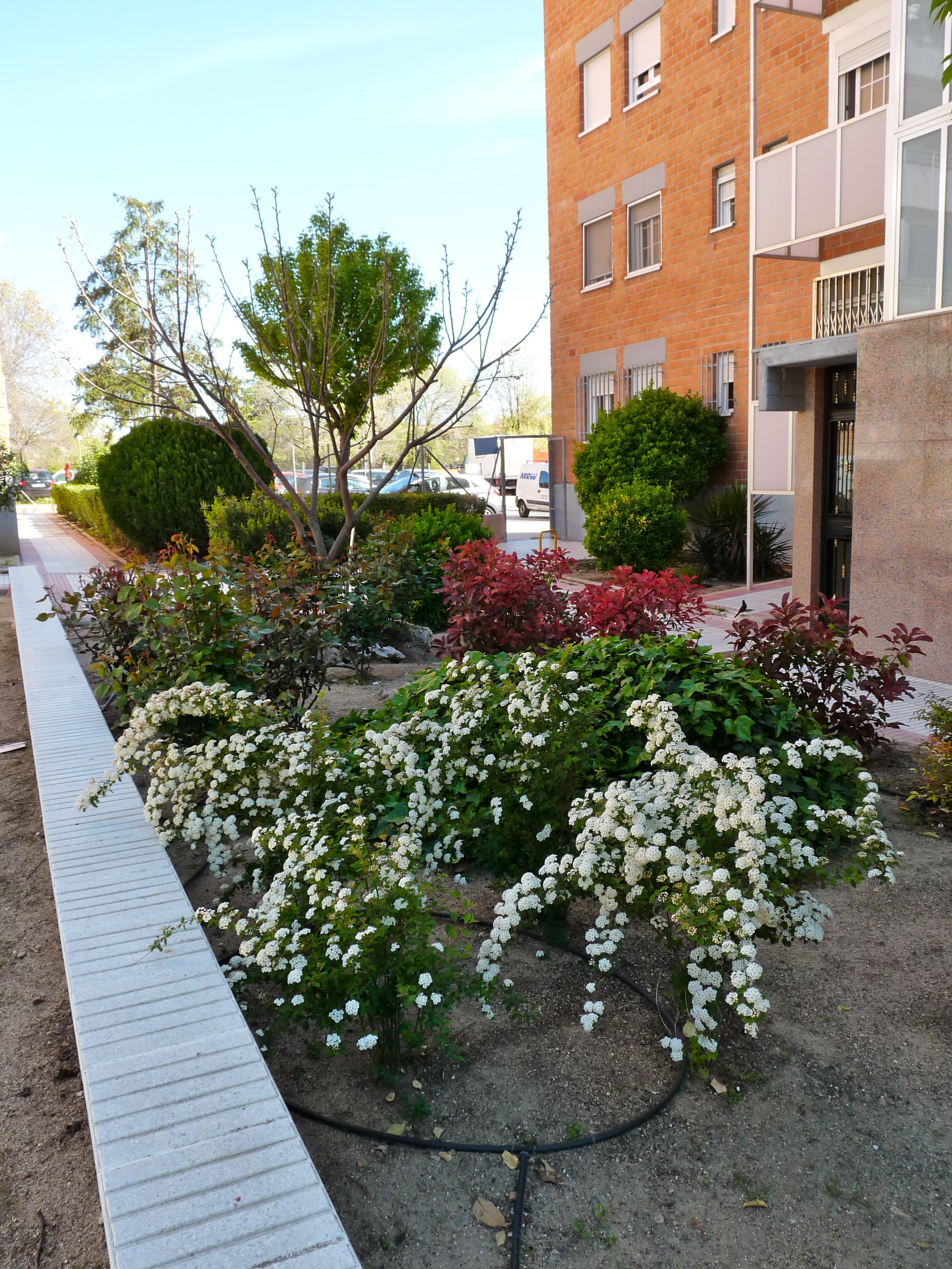Comunidad en Madrid