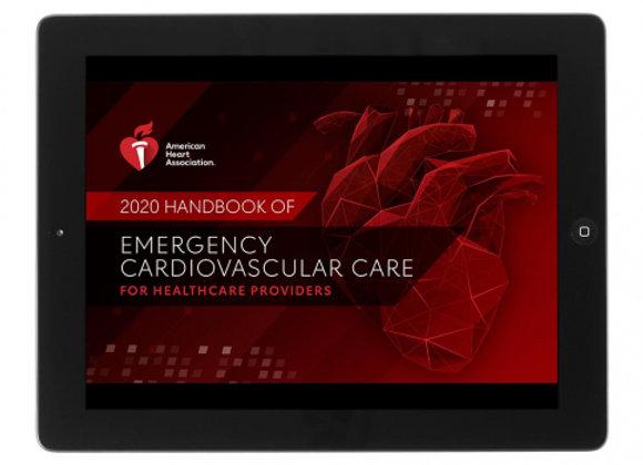 eBook Edition: 2020 CPR & ECC Handbook