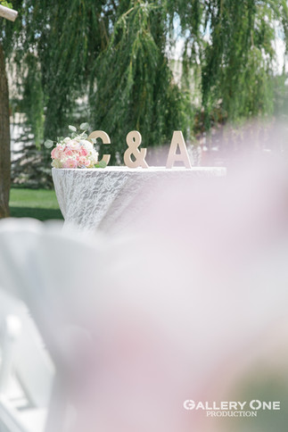 2020.08.18 C& AWedding-Willow Spring-112