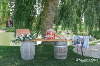 2020.08.18 C& AWedding-Willow Spring-113