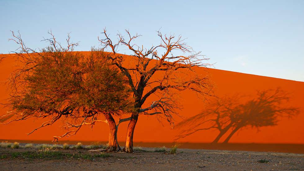Namibia (77).jpg