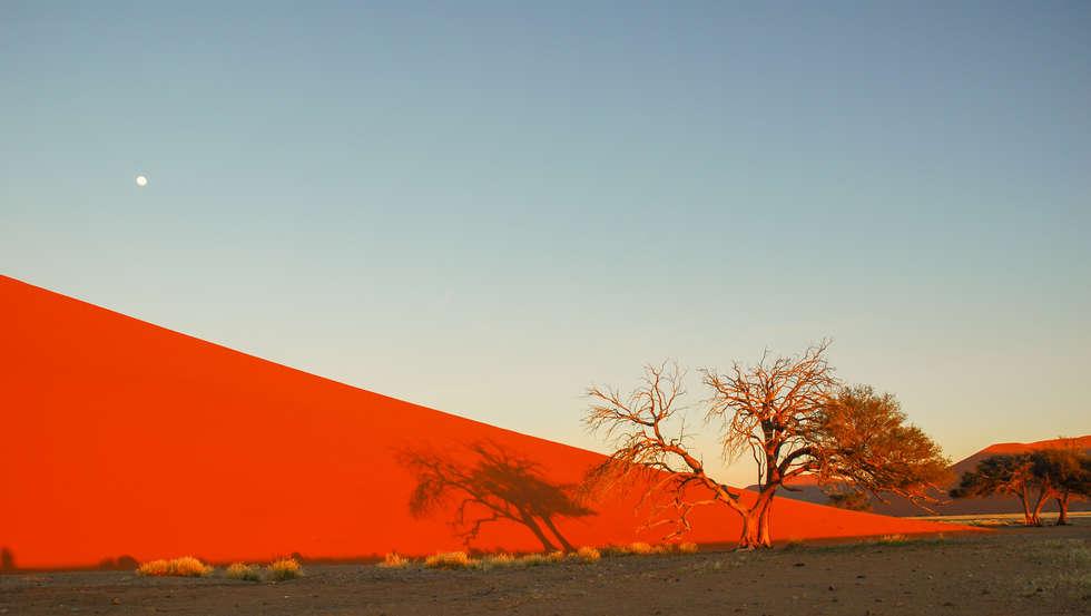 Namibia (86).jpg
