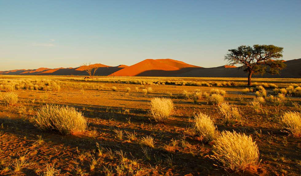 Namibia (110).jpg
