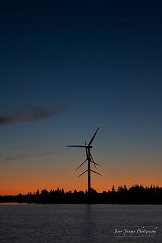 West Pubnico Windmills Captain's Choice