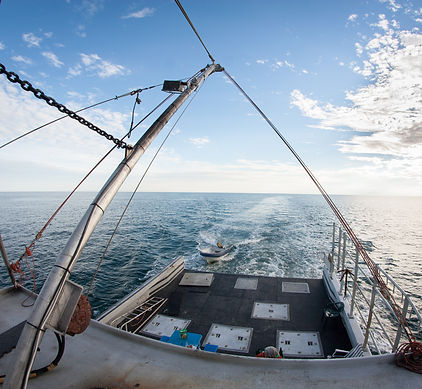 Nova Scotia Lobster Boat Captain's Choice