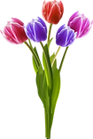 kisspng-vase-flower-bouquet-clip-art-han