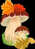 kisspng-edible-mushroom-autumn-fungus-cl