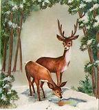 Glittered Snow Forest Deer Doe Buck VTG