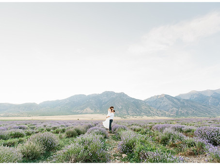 Lavender Fields Anniversary Session in Mona, Utah | Andrew and Nikki