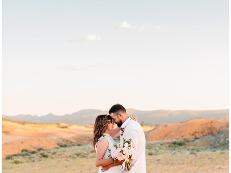 Coral Pink Sand Dunes Utah Intimate Wedding | Dave and Amy