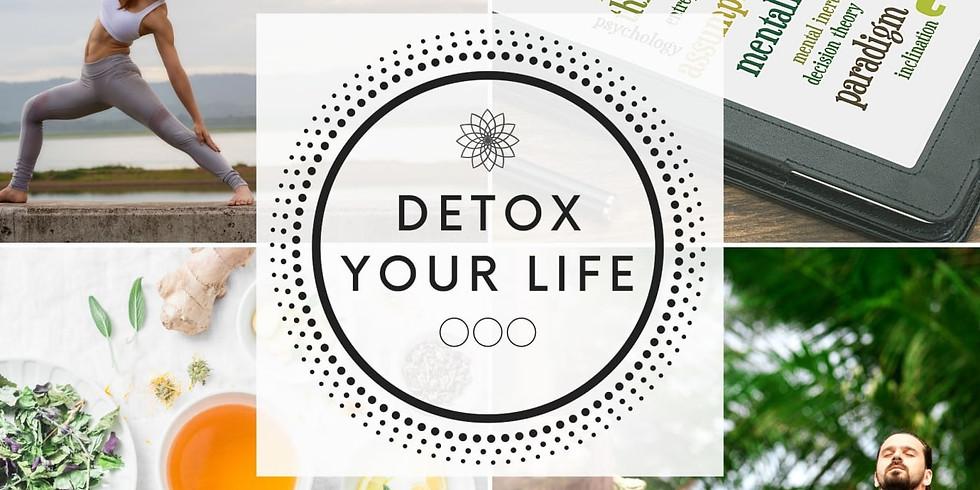 Info Webinar zu Detox your life