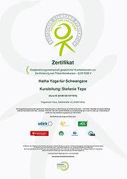 ZertiWeb1.jpg