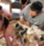 שיעור על יצור תפילין בקהילה המסורתית נוו