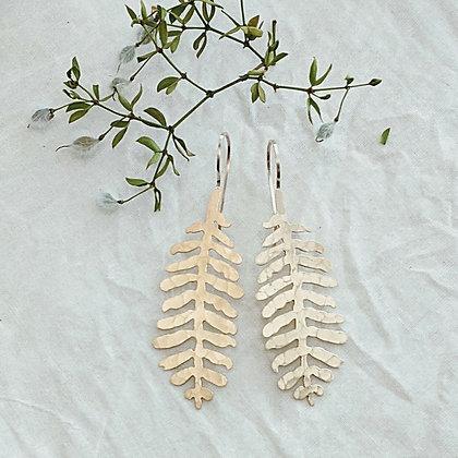 Brass Mesquite Leaf Earrings - Honey