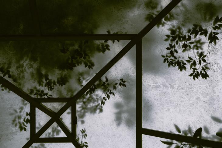 shelter-6