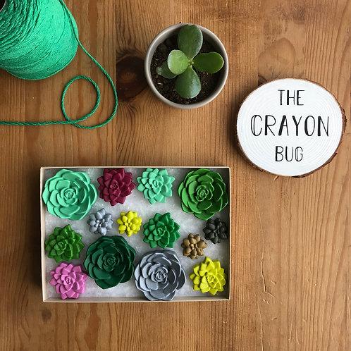 Succulent Crayons