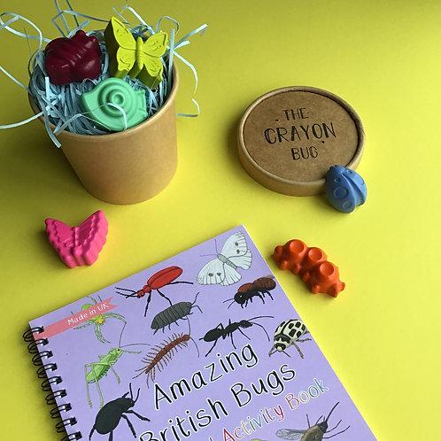 MN Amazing British Bugs Fact & Activity Book Set