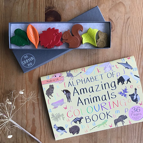 MN Woodland Crayons Colouring Book Set
