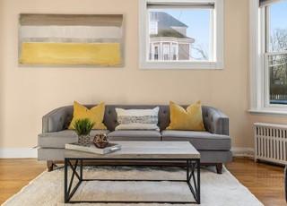Livingroom sofa .jpg