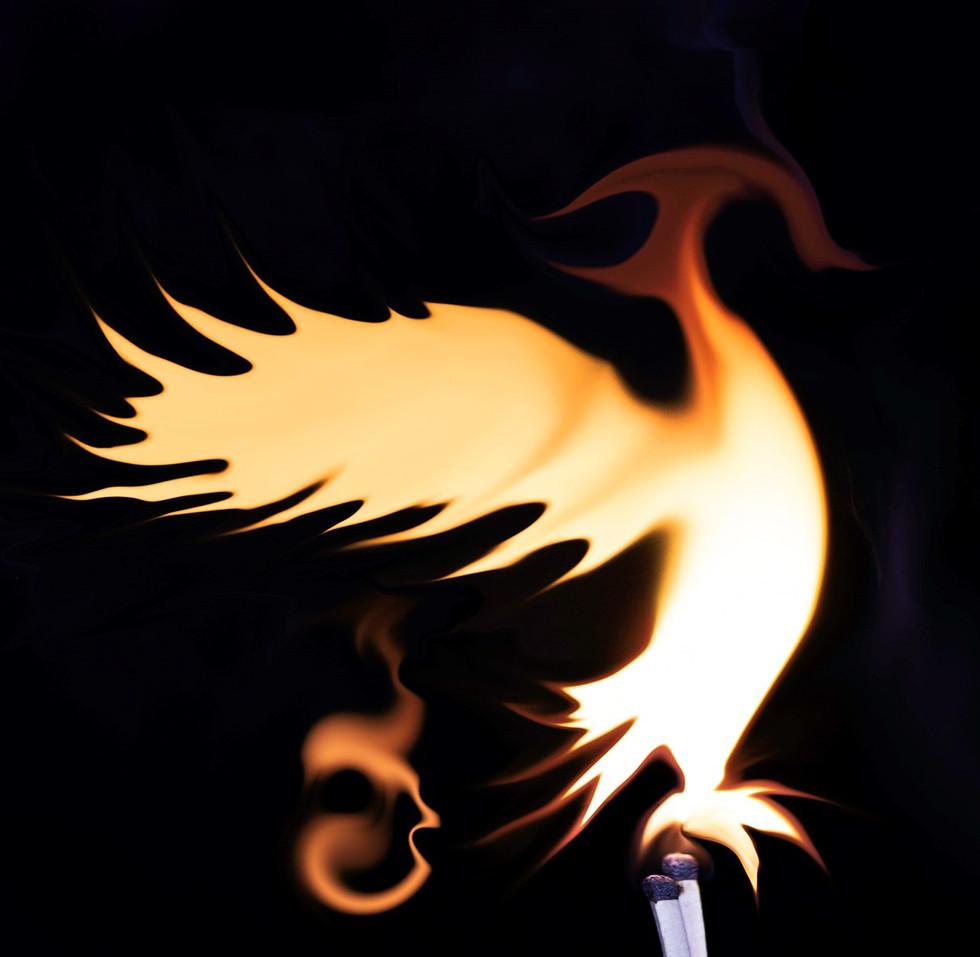 'Phoenix' by Gráinne Dixon (9 marks)