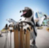 3d-penguin_microphones.jpg