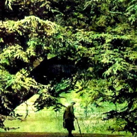 Woman under tree detail