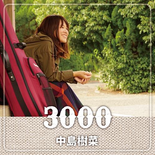 投げ銭:中島樹菜様へ ¥3000-