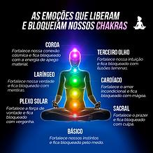 Chakras Vivencias.png