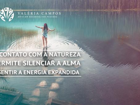 CONTATOS COM A NATUREZA - DICA Nº 6