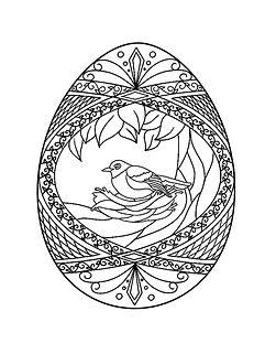 Bird egg 1 .jpg