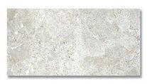 silver stone 12x24 H.jpg