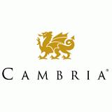 cambria_v_cmyk.png