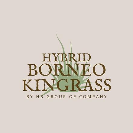 21-01 Logo Borneo Kingrass.png