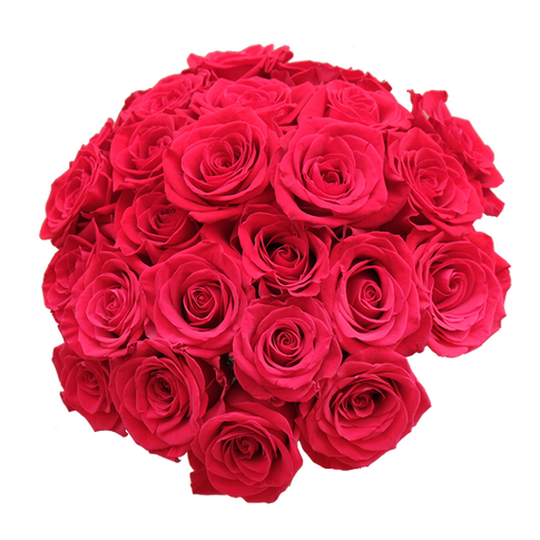 Russian Cut Roses