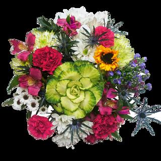 Best of Garden Premium Summer 2