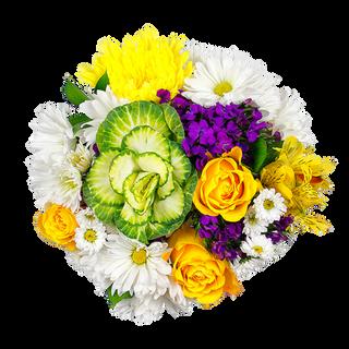 Best of Garden Perfecto Spring  1