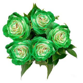 Lime Rose Bunch Enhanced