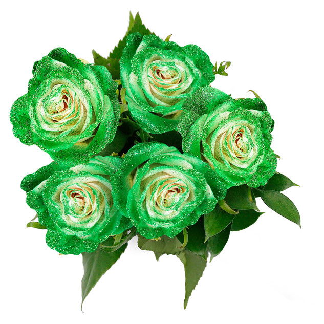 Lime Enhanced Rose Bouquet