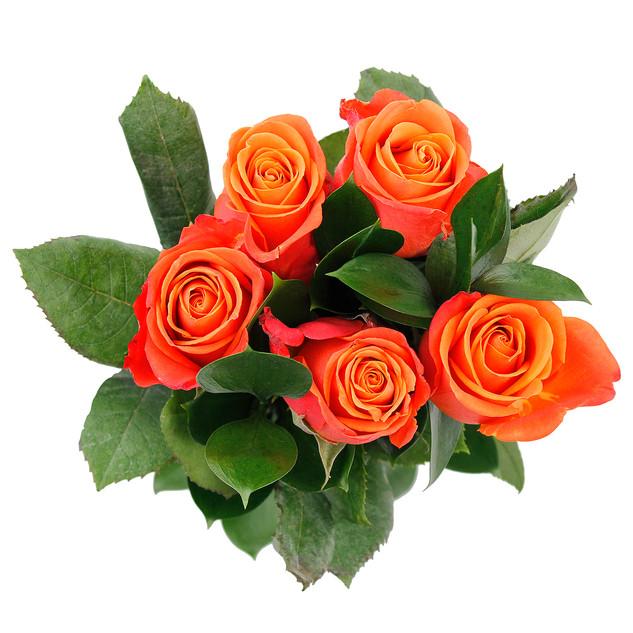 Orange Rose Bunch Natural