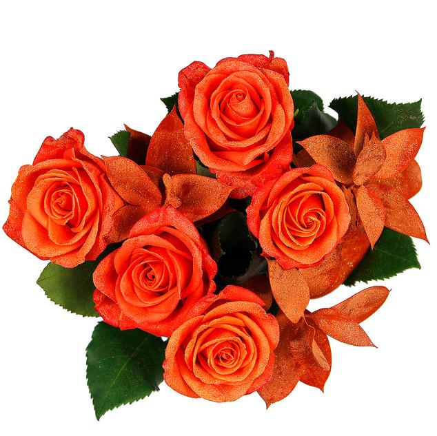 Pumpkin Rose Bunch Enhanced