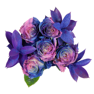 Blueberry Rose Bunch Enhanced