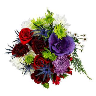 Best of Garden Perfecto Winter 2