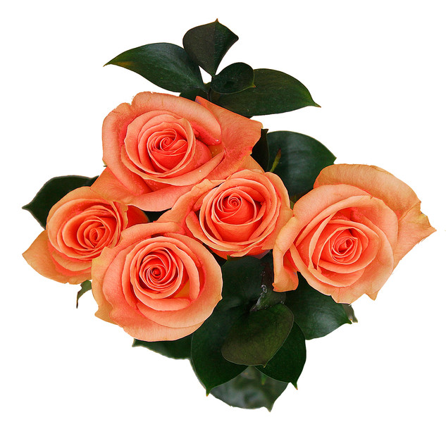 Apricot Natural Rose Bouquet